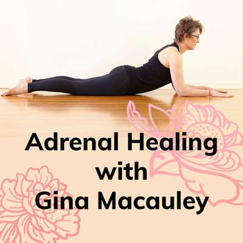 Adrenal Healing Workshop with Gina Macauley Image